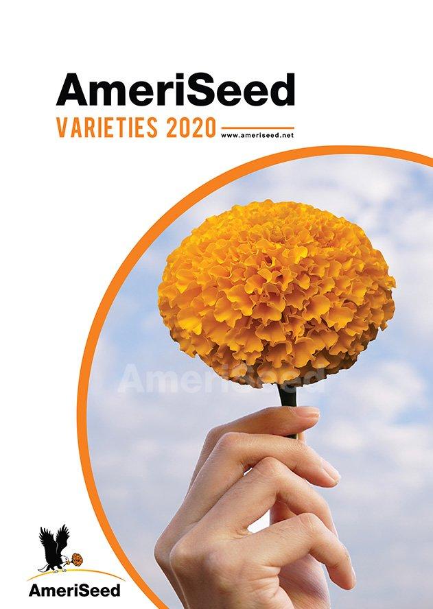 AmeriSeed-Varieties-2020