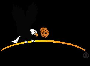 LogoAmeriseesR-21-01 (002)